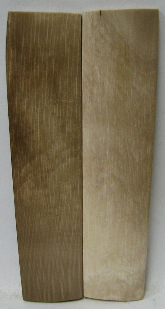 MAMMOTH IVORY SCALES 3-3/4 x 13/16 to 7/8 x 1/8