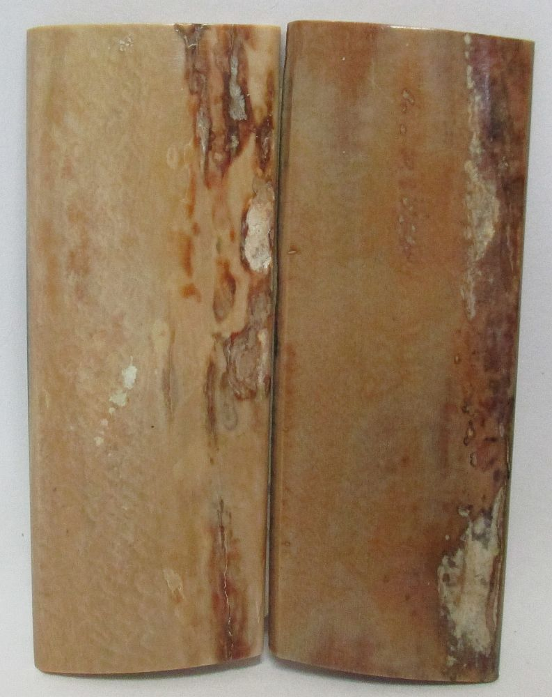MAMMOTH IVORY SCALES 2-1/2 to 2-9/16 x 15/16 to 1 x 1/8