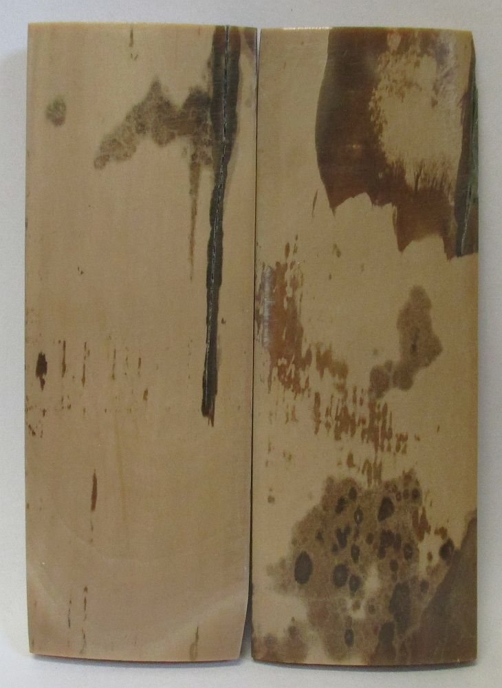 MAMMOTH IVORY SCALES 2-7/8 x 1 x 5/32