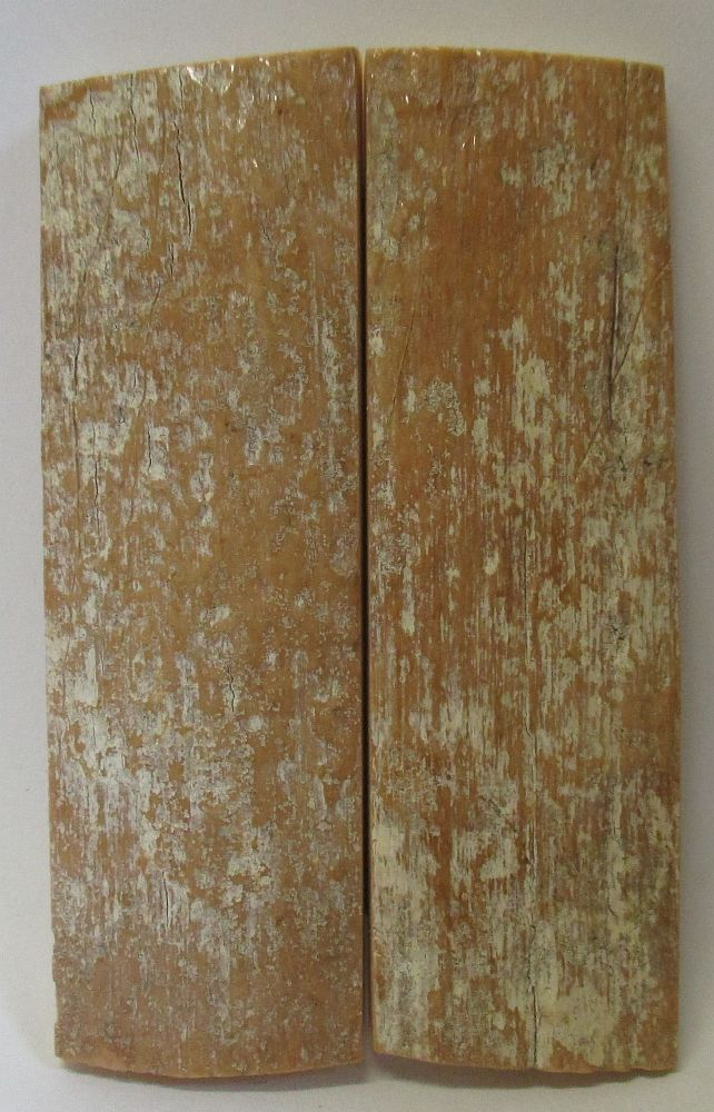 MAMMOTH IVORY SCALES 2-13/16 to 2-15/16 x 7/8 to 15/16 x 7/32
