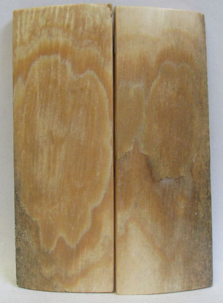 MAMMOTH IVORY SCALES 2-7/16 x 13/16 to 7/8 x 1/8