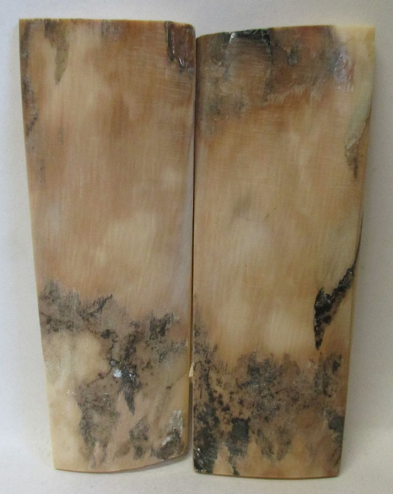 MAMMOTH IVORY SCALES 2-15/16 x 15/16 to 1-1/8 x 1/8 to 5/32
