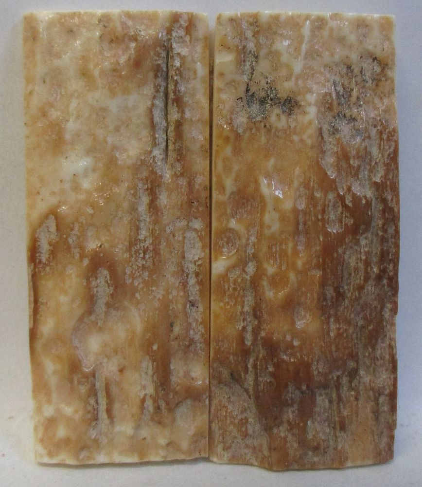 MAMMOTH IVORY SCALES 2-1/4 x 7/8 to 15/16 x 5/32