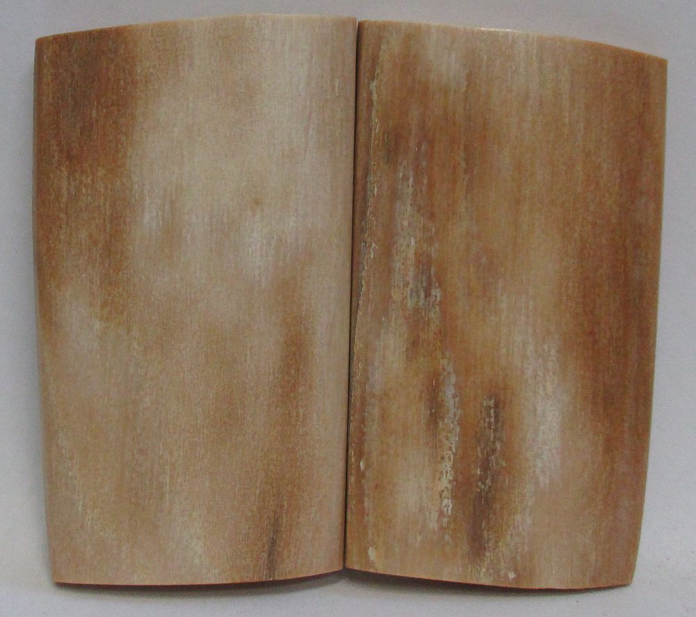 MAMMOTH IVORY SCALES 2-1/8 x 1-1/8 to 1-1/4 x 3/16