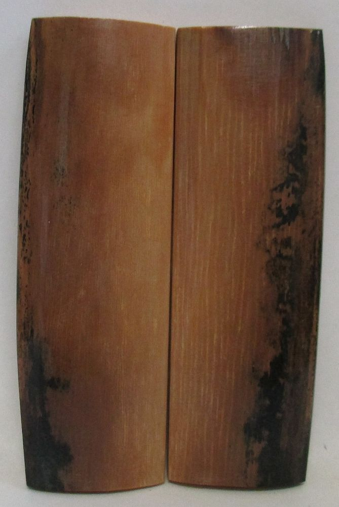 MAMMOTH IVORY SCALES 2-1/2 x 3/4 to 13/16 x 5/32 to 3/16