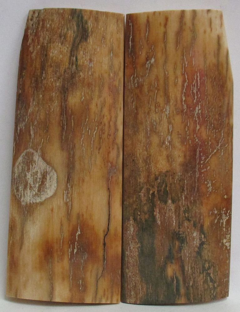 MAMMOTH IVORY SCALES 4-1/8 x 1-3/8 to 1-9/16 x 3/16 to 5/32