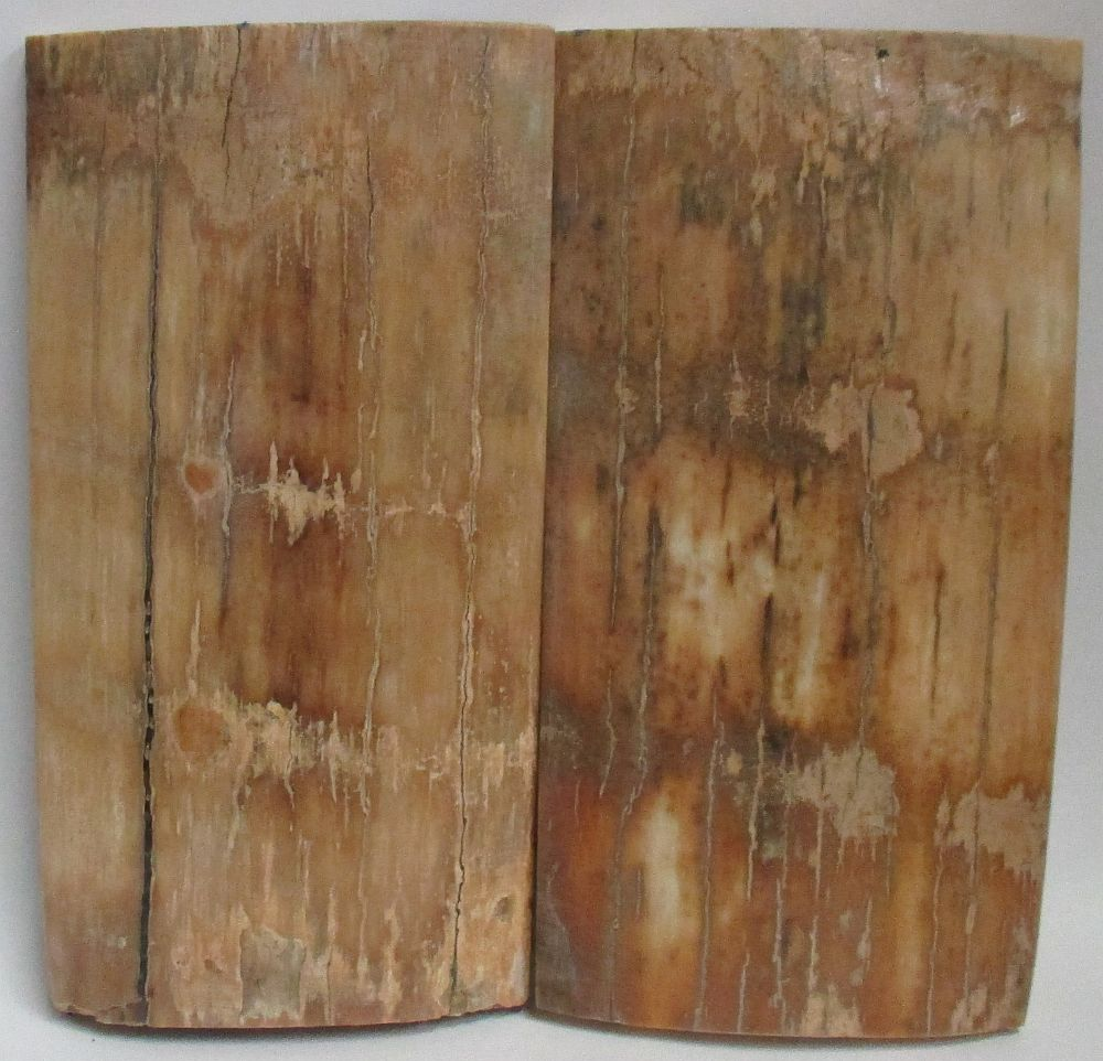 MAMMOTH IVORY SCALES 3-3/4 x 1-7/8 to 2 x 3/8