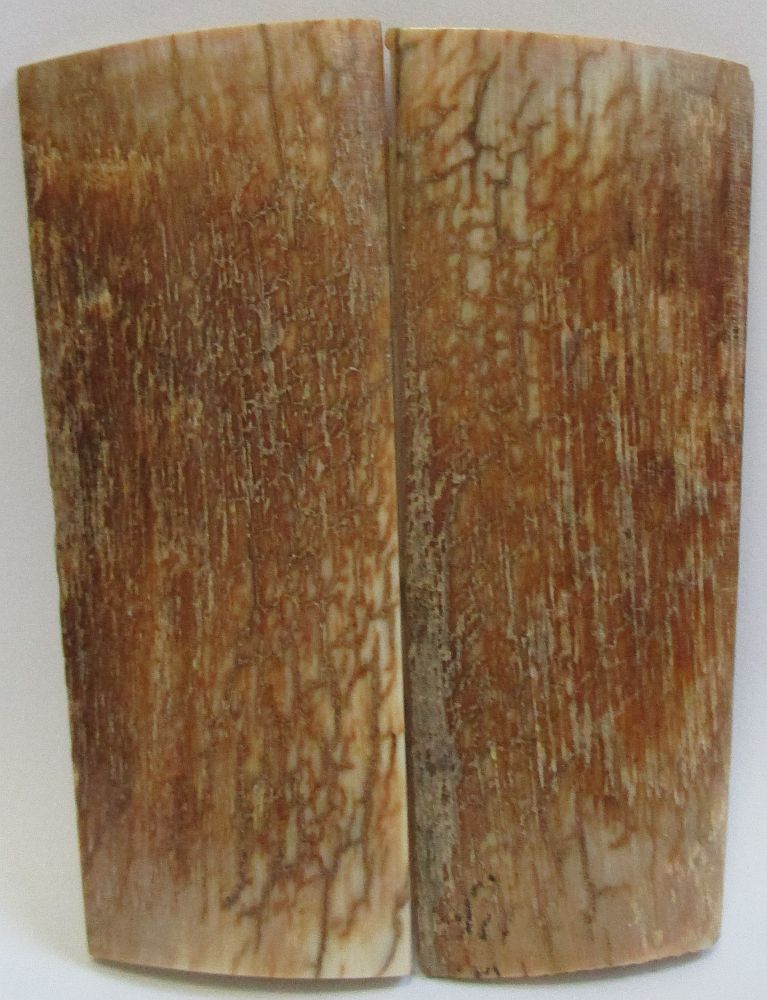MAMMOTH IVORY SCALES 2-11/16 x 7/8 to 1-1/8 x 5/32