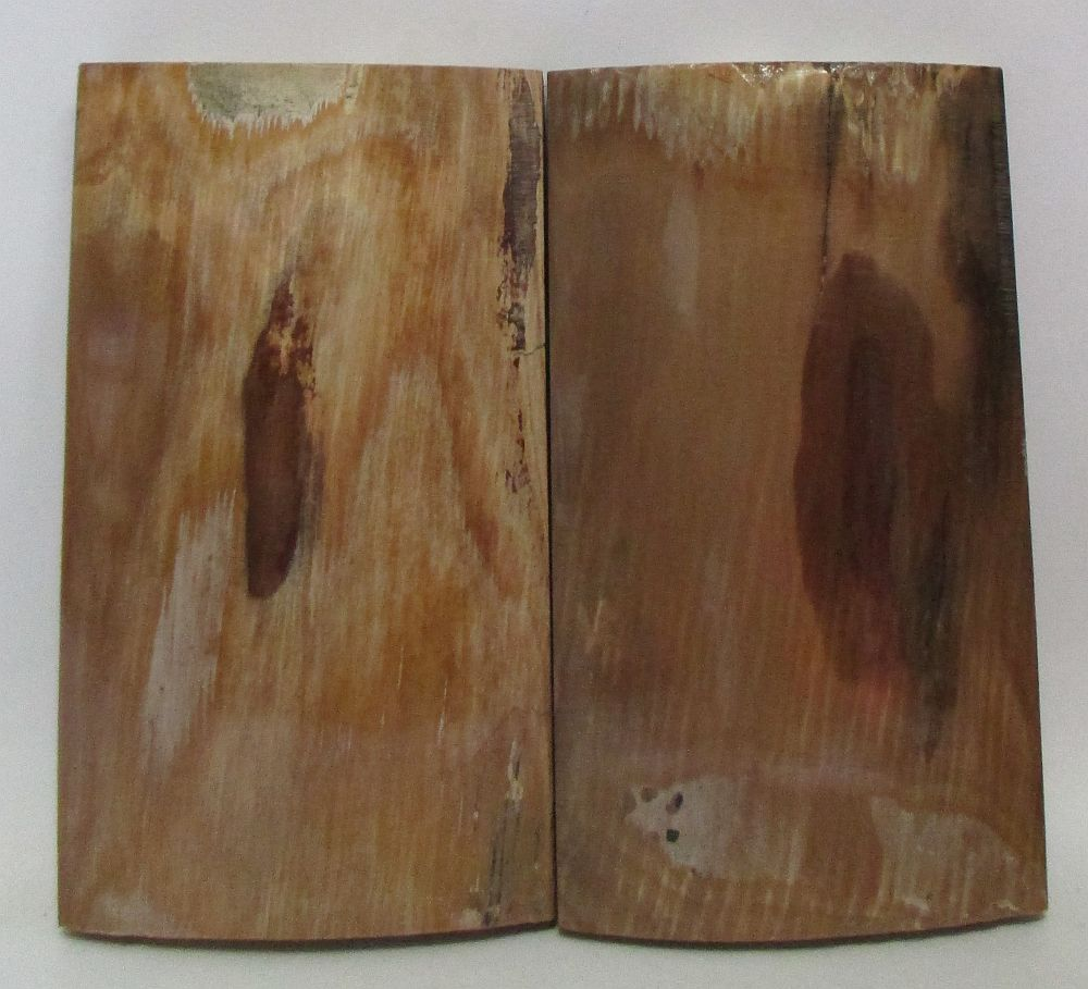 MAMMOTH IVORY SCALES 2-13/16 x 1-9/16 x 3/16 to 3/8