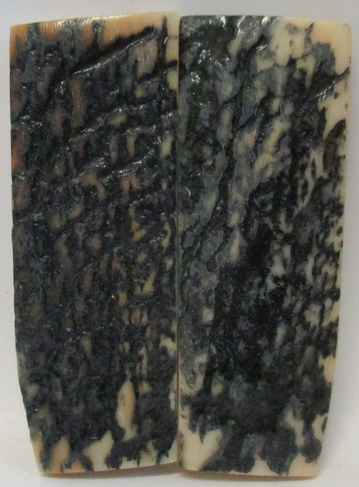 MAMMOTH IVORY SCALES 2-1/4 x 11/16 to 13/16 x 3/16