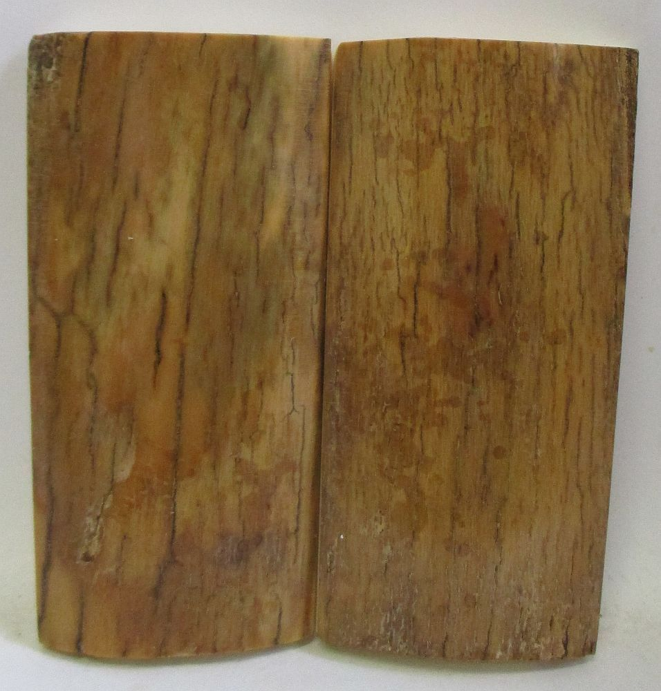 MAMMOTH IVORY SCALES 2-11/16 x 1-3/16 to 1-3/8 x 5/16
