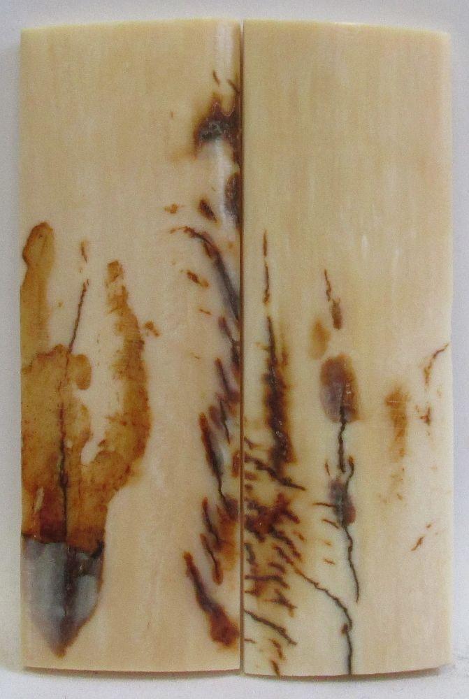 MAMMOTH IVORY SCALES 2-3/4 x 15/16 x 1/8