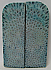 FOSSIL CORAL SCALES 3-7/8 x 1-1/4 x 3/16