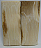 MAMMOTH IVORY SCALES 2-13/16 x 1-1/16 to 1-1/8 x 1/8