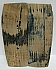 MAMMOTH IVORY SCALES 2-5/8 x 1 x 1/8