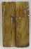 MAMMOTH IVORY SCALES 2-11/16 x 13/16 x 5/32