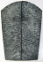 FOSSIL CORAL SCALES 3-5/8 to 4-3/16 x 1-1/4 to 1-3/8 x 5/32 to 3/16