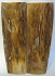 MAMMOTH IVORY SCALES 2-15/16 x 13/16 to 15/16 x 1/8