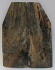 MAMMOTH IVORY SCALES 2-5/16 to 2-13/16 x 3/4 to 1-1/8 x 1/8
