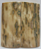 MAMMOTH IVORY SCALES 2-5/8 x 1-1/16 to 1-1/8 x 1/4
