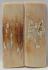 MAMMOTH IVORY SCALES 2-1/4 x 3/4 x 1/8
