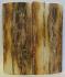 MAMMOTH IVORY SCALES 2-5/16 x 1 x 5/32