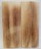 MAMMOTH IVORY SCALES 2-9/16 x 1 x 5/32