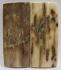 MAMMOTH IVORY SCALES 2-1/4 x 1 x 1/8
