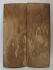 MAMMOTH IVORY SCALES 2-3/8 x 7/8 x 1/8