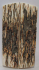 MAMMOTH IVORY SCALES 2-5/8 to 2-13/16 x 11/16 to 3/4 x 1/8