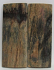 MAMMOTH IVORY SCALES 2-3/8 x 15/16 x 1/8
