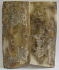 MAMMOTH IVORY SCALES 2-5/8 to 2-3/4 x 1-1/8 x 1/8