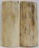 MAMMOTH IVORY SCALES 2-3/4 x 1-1/16 x 3/16