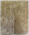 MAMMOTH IVORY SCALES 2-5/8 x 1-1/16 x 7/32