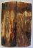 MAMMOTH IVORY SCALES 2-5/8 x 7/8 x 3/16