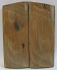 MAMMOTH IVORY SCALES 2-3/4 to 2-5/8 x 1-1/8 x 3/16