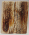 MAMMOTH IVORY SCALES 2-5/16 X 15/16 X 1/8