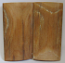 MAMMOTH IVORY SCALES 2-5/8 x 1-5/16 to 1-3/8 x 5/32