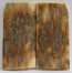 MAMMOTH IVORY SCALES 2-3/16 x 1 to 1-1/16 x 5/32