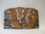 MAMMOTH TOOTH      1-5/8 to 1-13/16 X 1-9/16 X 1/8